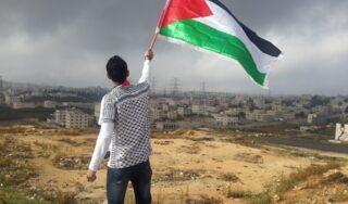 Palestine flag feature