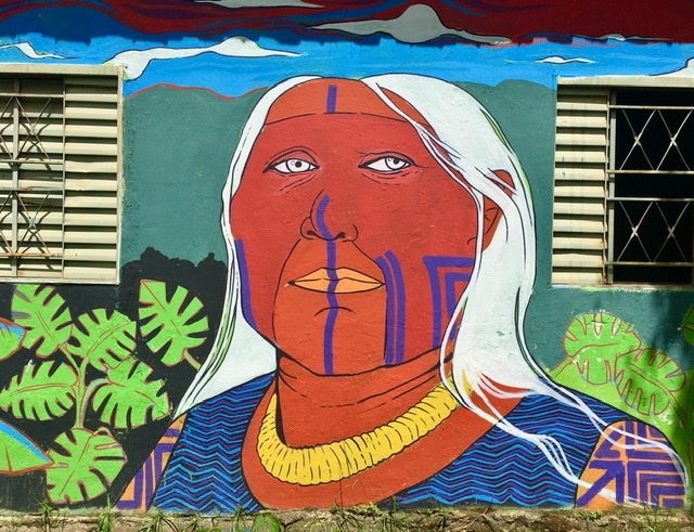 Indigenous mural feature