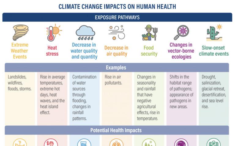 Climate change impact on human health