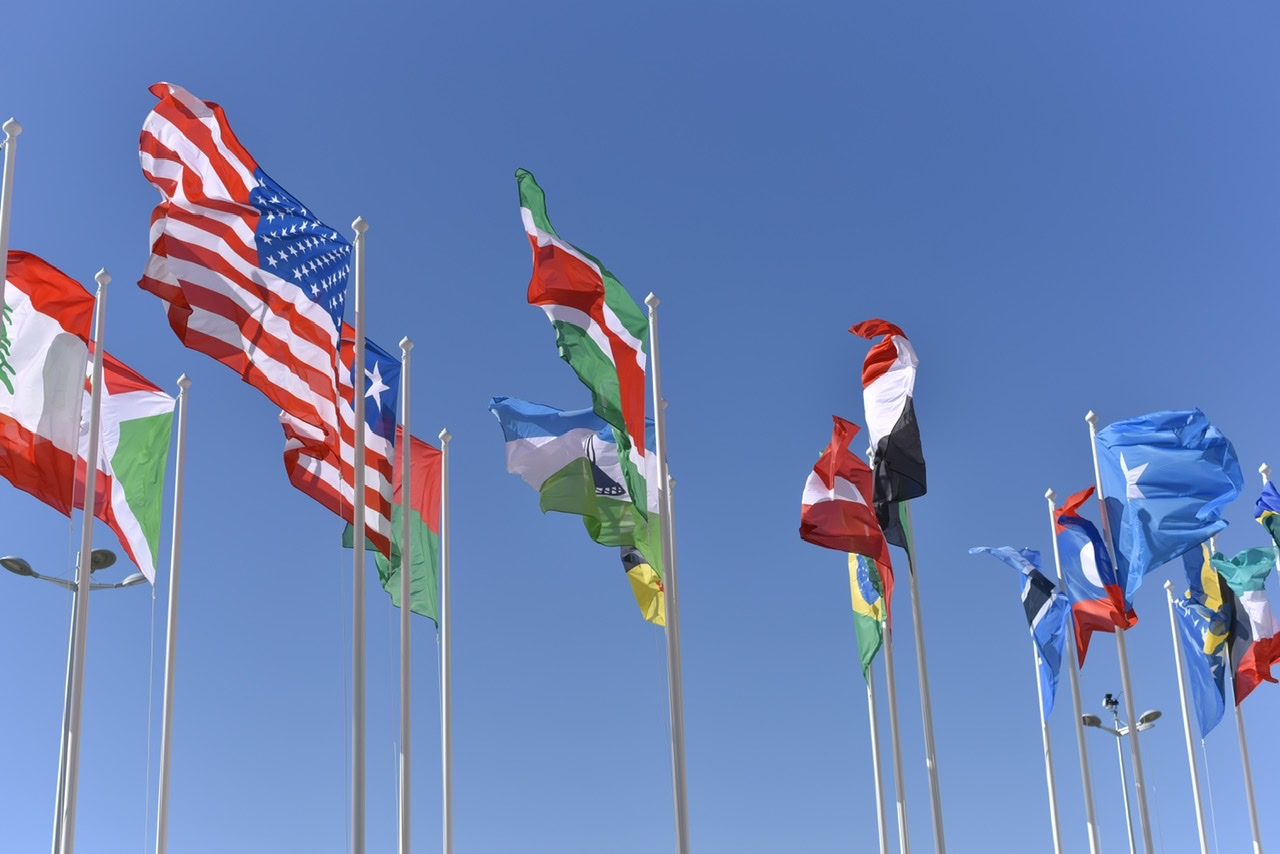 Flags feature